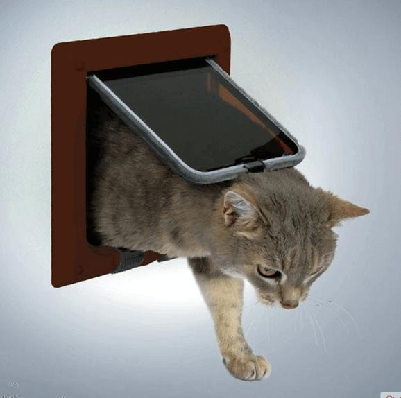 Дверца для Кошек в Дверь Своими Руками — пошаговая инструкция